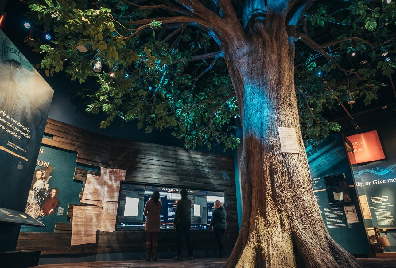 A large tree, posters, and artifacts in the Museum of the American Revolution Gallery